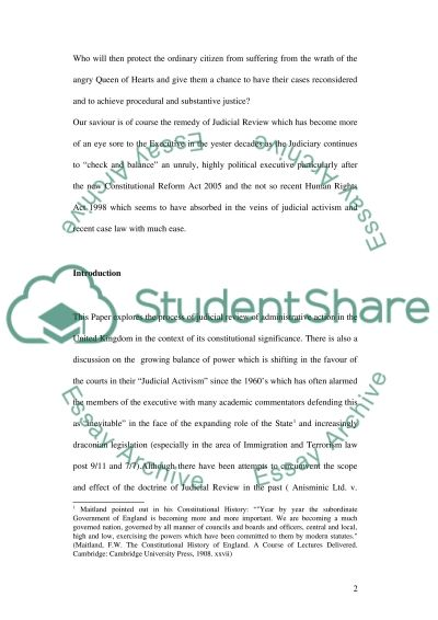 Judicial Review essay example