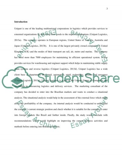Situational Analysis of International or Global Marketing Environment essay example