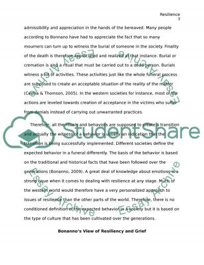 Bereavement care essay example