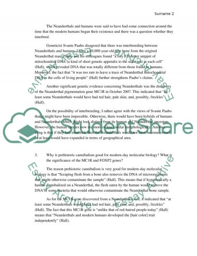 Anthropology (Last of the Neanderthals) essay example