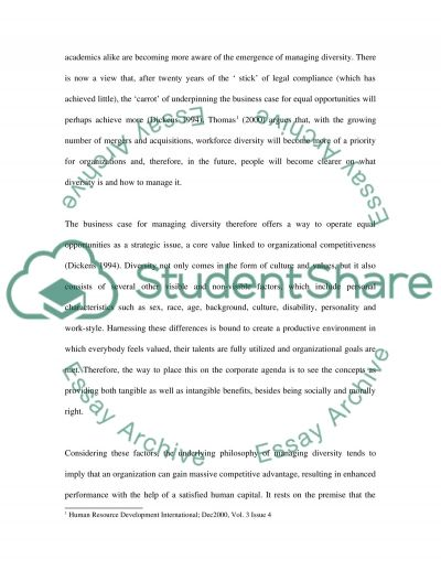 Human Resource Management in International Organizations essay example