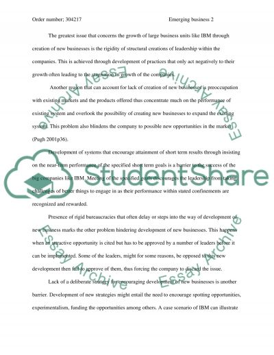 Emerging Business Opportunities at IBM essay example
