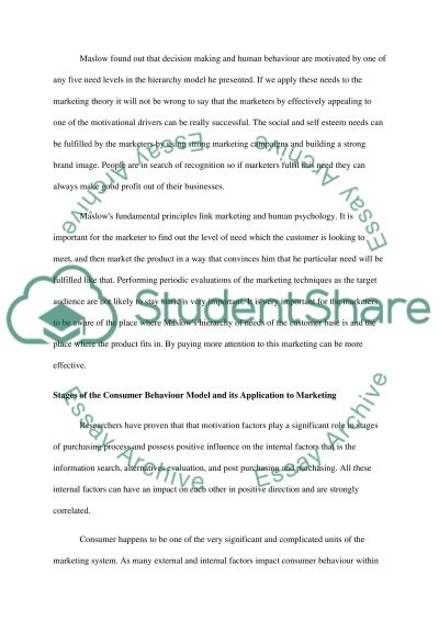 Target Audience & Competition essay example