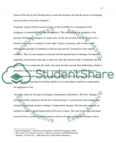Civil Liability essay example