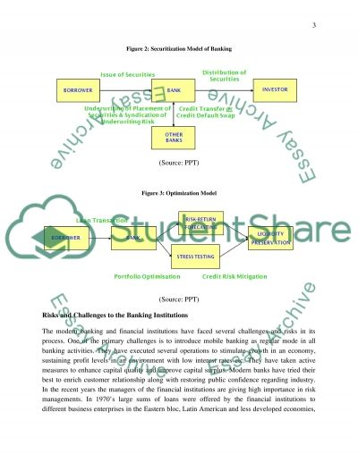 Financial Risk Management essay example