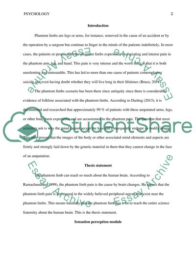 High School Essays Examples What Can Phantom Limb Pain Teach Us About The Human Brain Essays On English Language also Living A Healthy Lifestyle Essay What Can Phantom Limb Pain Teach Us About The Human Brain Essay Examples Of Argumentative Thesis Statements For Essays