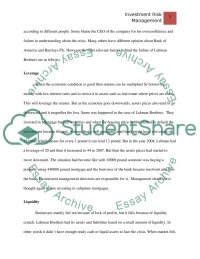 How to Manage the Risk essay example