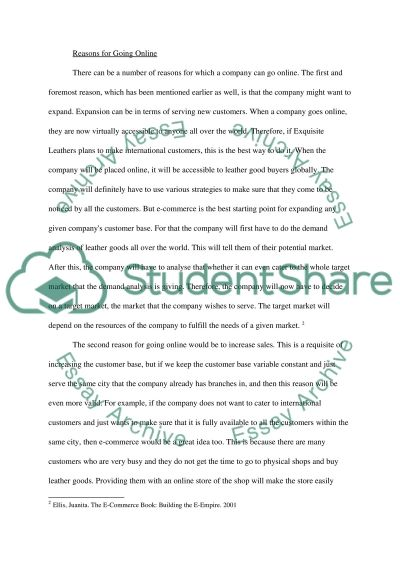 Internet Business and E-Commerce essay example
