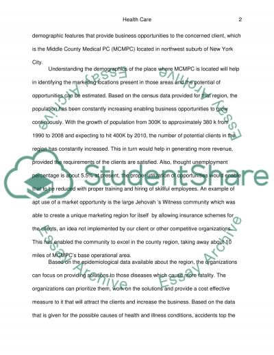 Writting health care business paper essay example