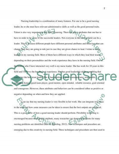 Nursing Leadership In Global Healthcare essay example