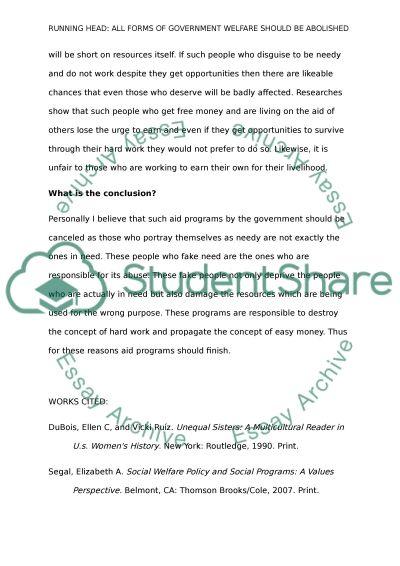 Essay on social welfare programs