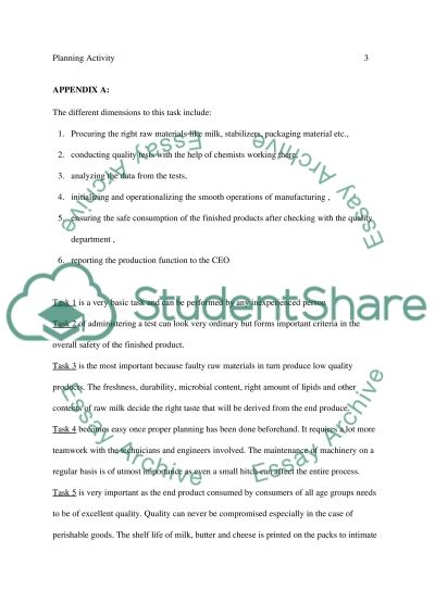 Planning Activity essay example