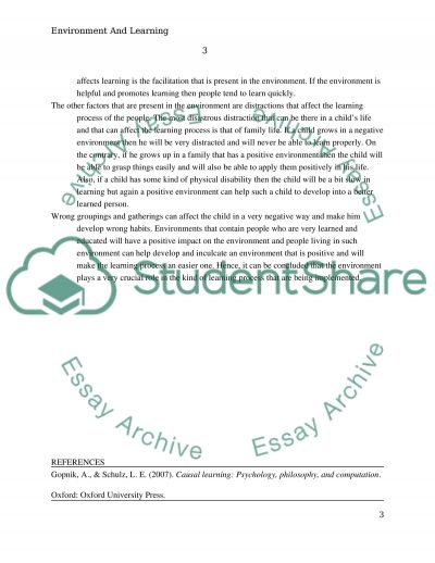 Role of Environment in Learning essay example