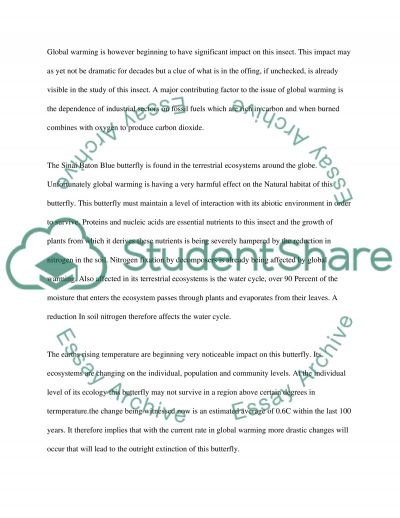 Ecology Essay essay example