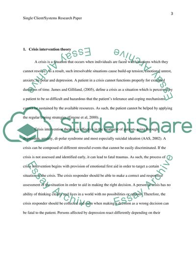Single client/systems research paper