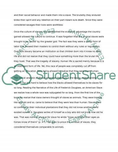 Slave ownership in America essay example