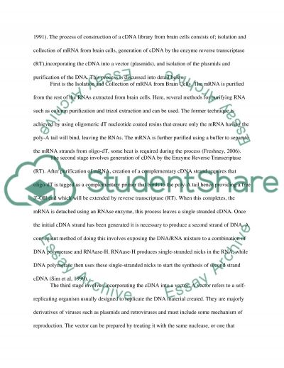 essay construction topics