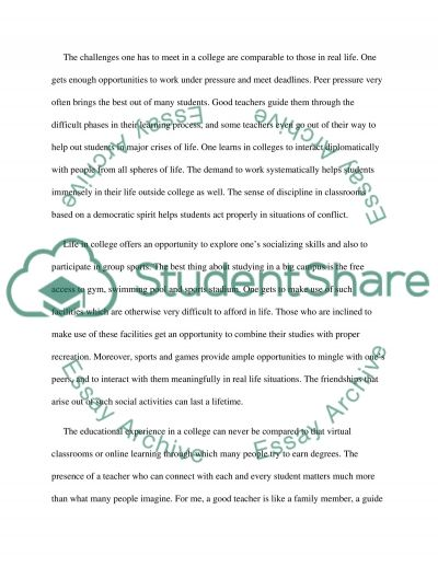 College Is Important essay example