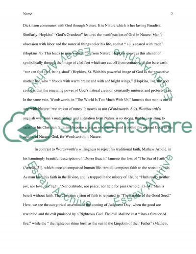 Poetry Essay essay example