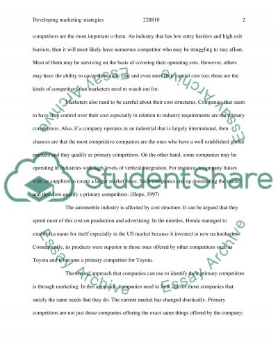 Developing Marketing Strategies and Plans Essay example