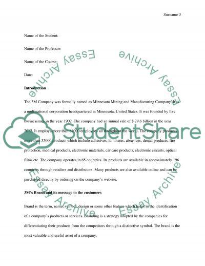 3M Company Analysis essay example
