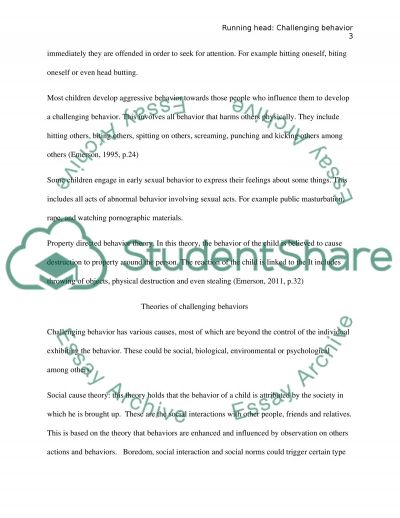 Challenging behavior essay example