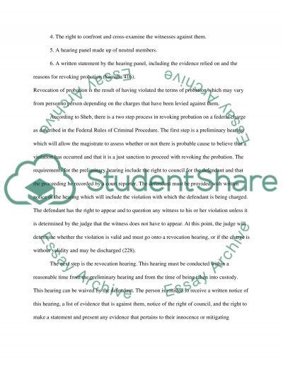 Crime and punishment essay example