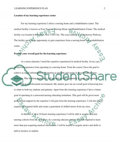 Learning Experience Plan essay example