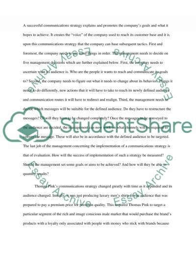 Communication Stratergy Essay example