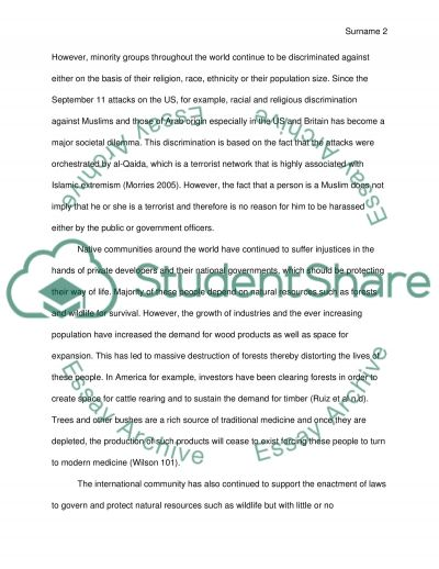 Cultural Rights Paper essay example