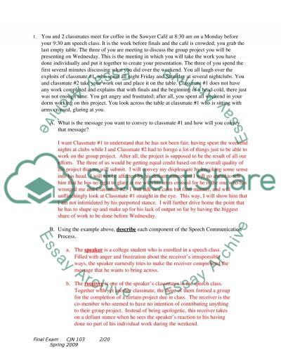 Speech essay example