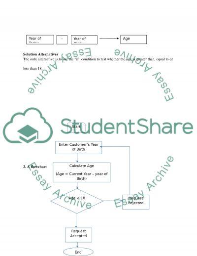 Programming essay example