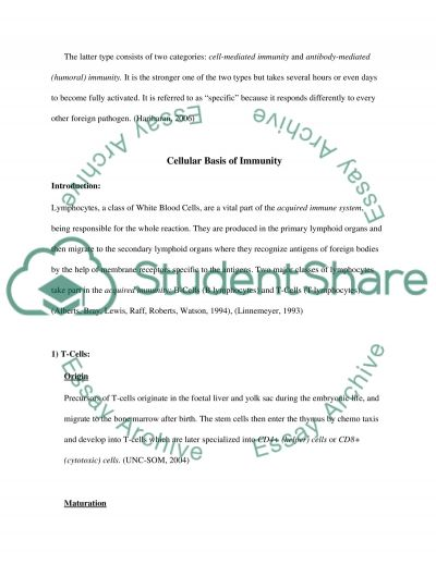 T cellB cell collaboration in the immune response to infection essay example
