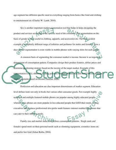 marketing segmentation essay example