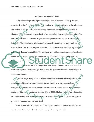 Cognitive Development Theory essay example