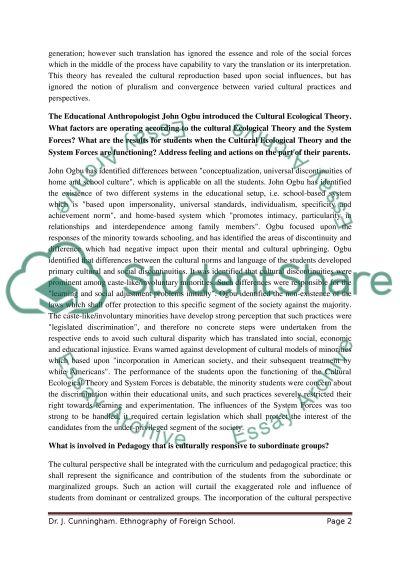 Sociology College Essay essay example