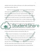 Project Implementation Process Essay example