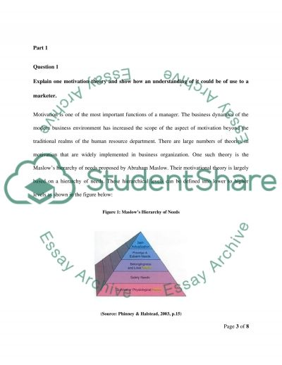 Principles of Marketing for Business essay example