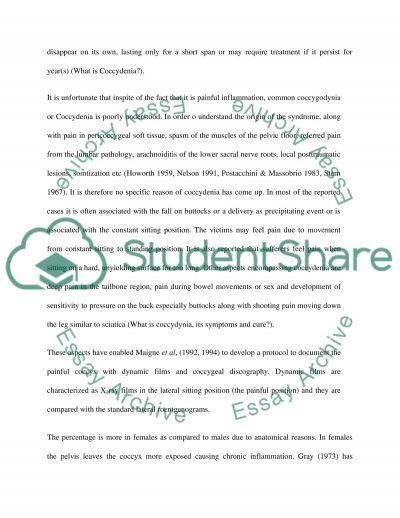 Coccydenia essay example