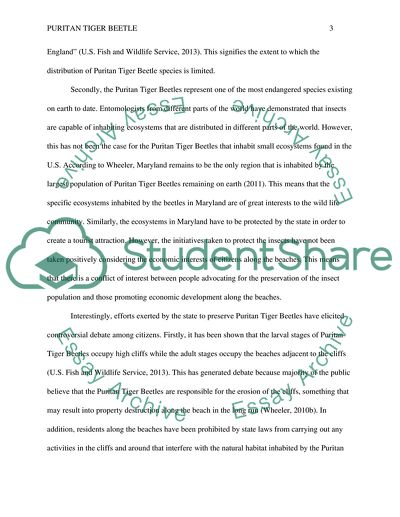 English Essay On Terrorism Puritan Tiger Beetle Controversy Essay In English Language also Corruption Essay In English Puritan Tiger Beetle Controversy Essay Example  Topics And Well  Essay With Thesis Statement
