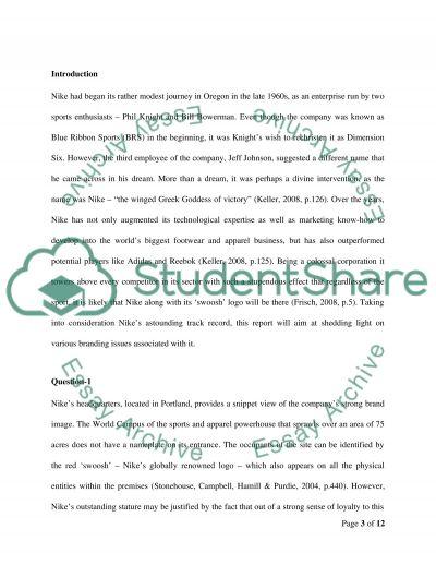 NIKE essay example