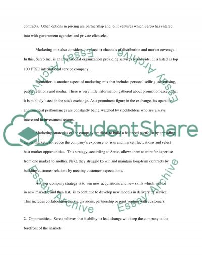 Marketing Group Report (My part) essay example