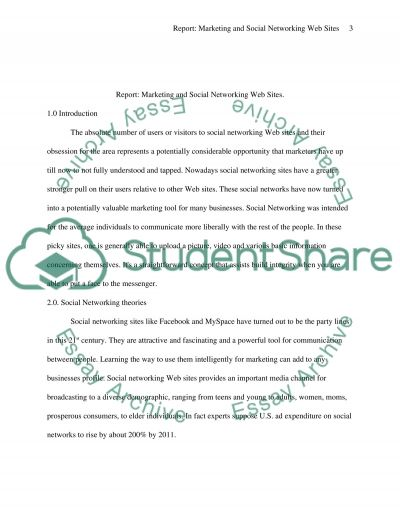 Marketing and Social Networking Web Sites essay example