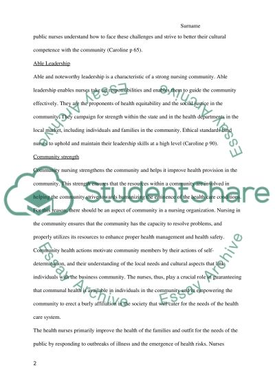 Nurse Community Building Research Paper example