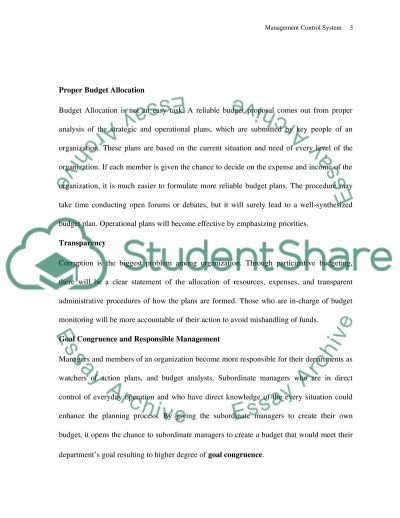 Management Control System essay example