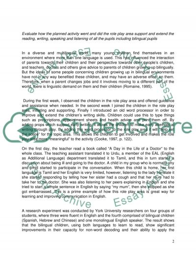 Planned Activity in Education essay example