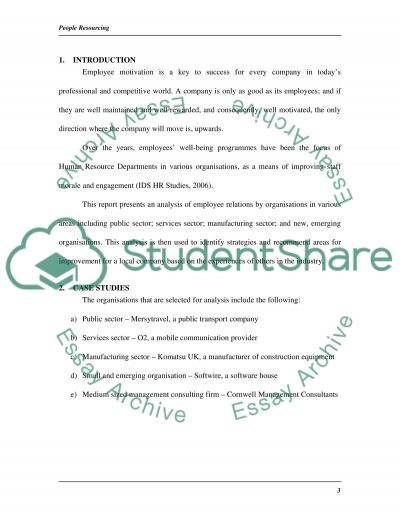 People Resourcing Essay example