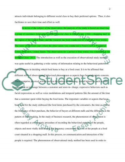 Consumer Behavior: Observational Research Term Paper essay example