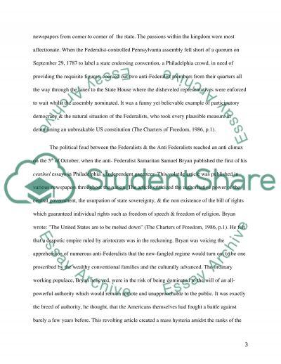 The American Constitution essay example