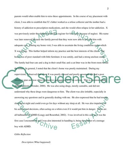 Reflective Placement Case Study